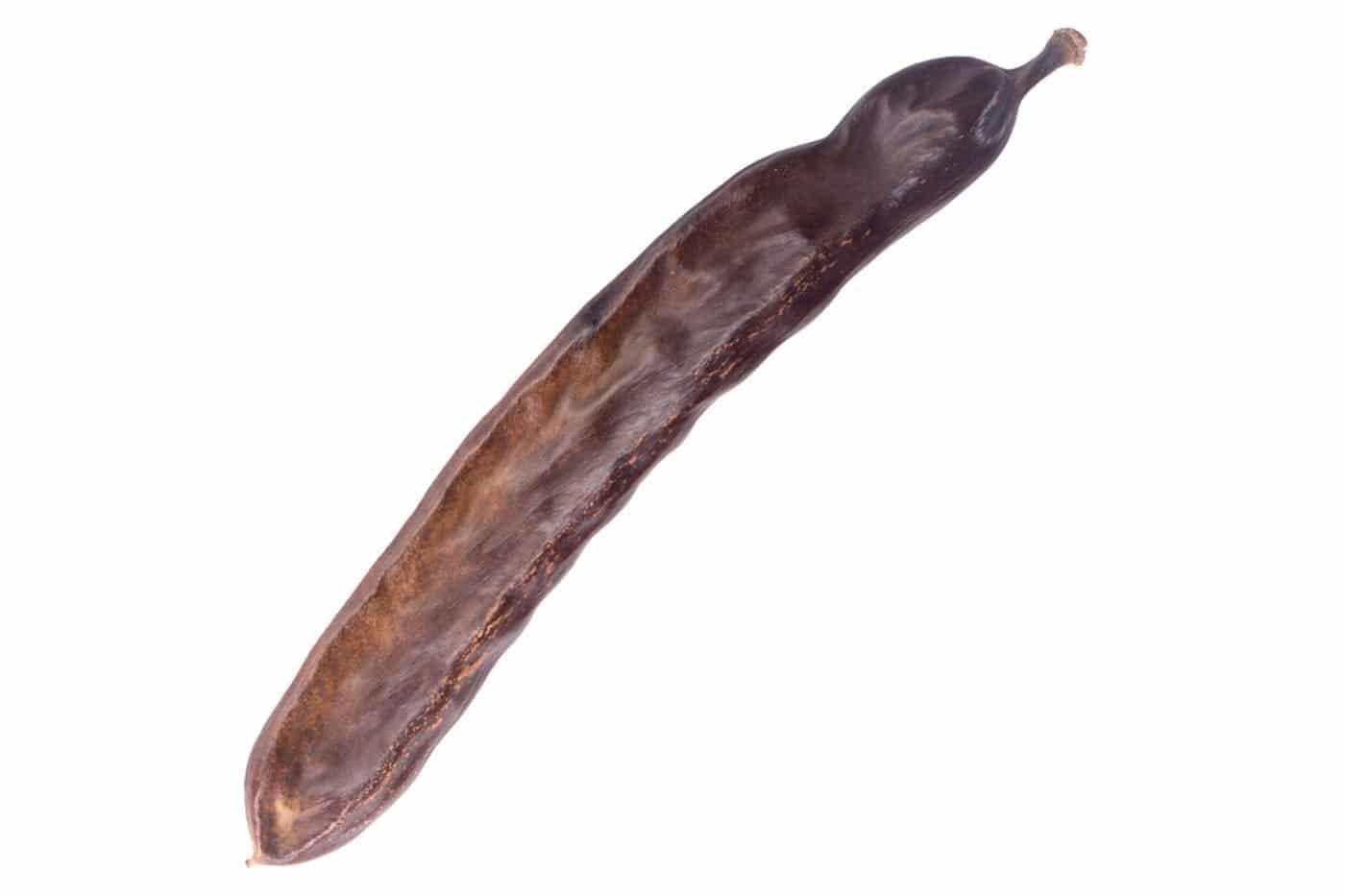 Caroubier-root