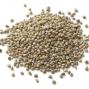 Millet en graines